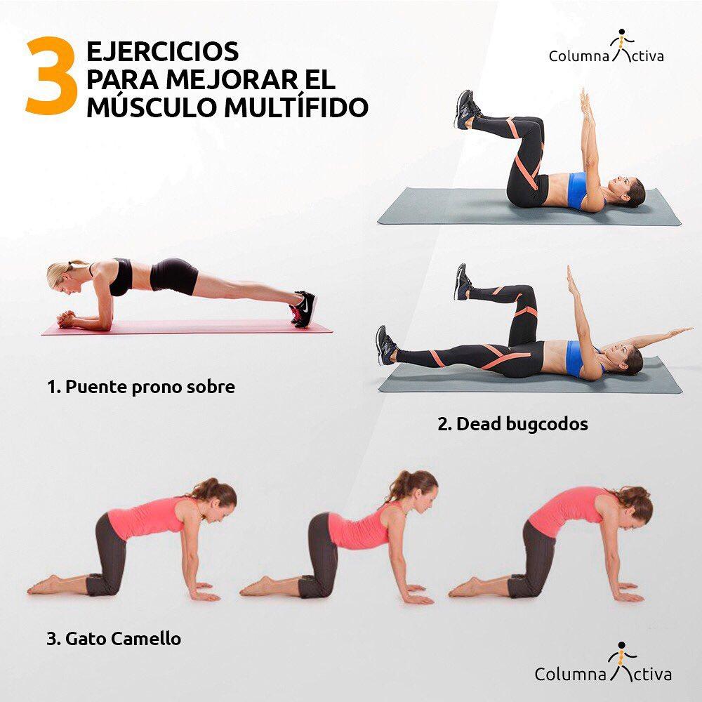 3 ejercicios para mejorar el músculo multífido