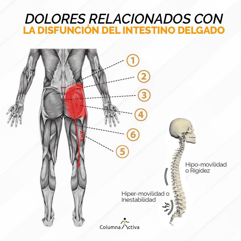 Dolores relacionados con la disfunción del intestino delgado